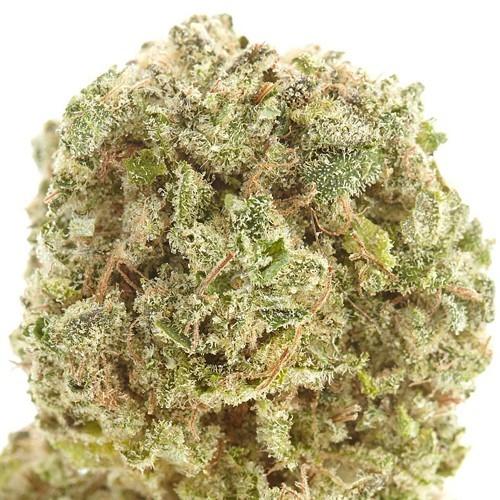 Medical cannabis strain Cherry AK