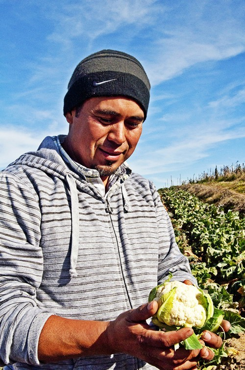 Ground Stew Farms Sergio Jimenez, whose produce will be featured at the Food Day pop-up in Old Oakland.