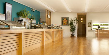 The city of San Jose is again mulling a ban in dispensaries. Here, the interior of Harborside Health Center - San Jose.
