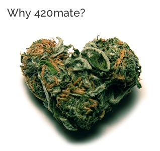 my420mate.png