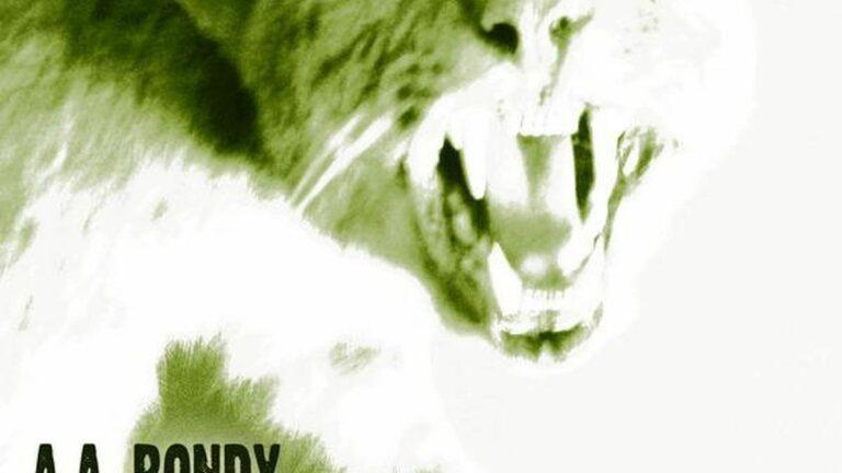 A.A. Bondy