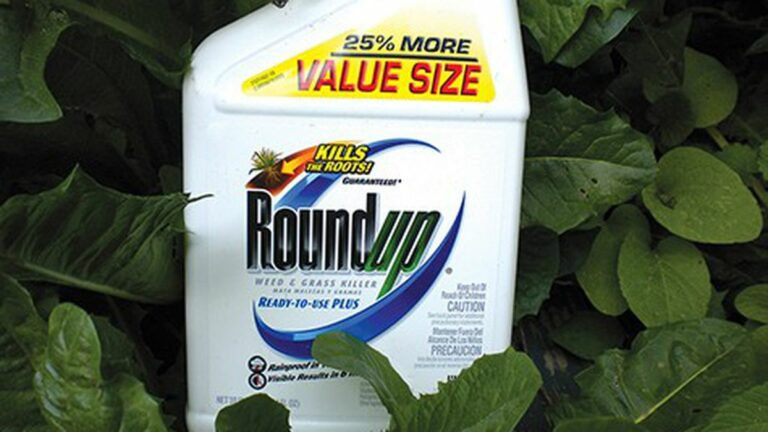 The Case for Banning Monsanto's Roundup
