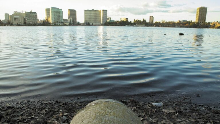 Oakland Officials Call for Probes of Sewage Leaks