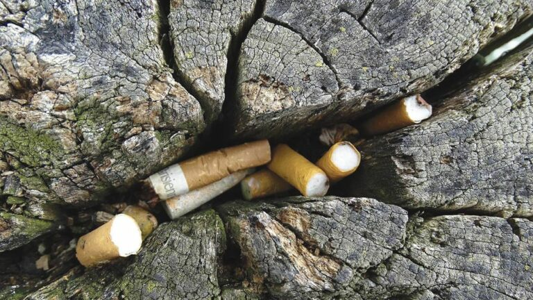 New Law Bans Smoking in Parks and Beaches — Except Where It Doesn't
