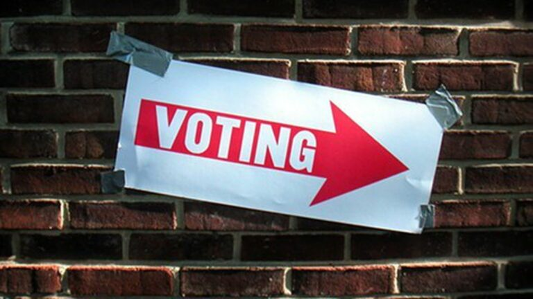Everything You've Ever Wanted to Know About Voter ID Laws