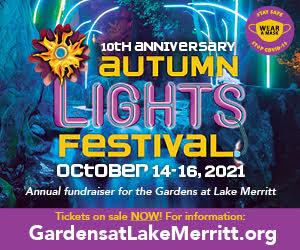 gardens at lake merritt, autumn lights festival